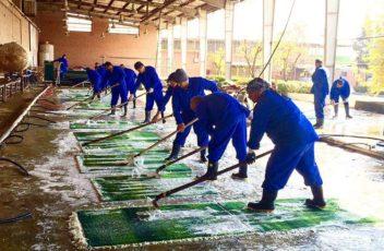 produkcja dywanów Gabbeh