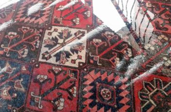 Wet-Rug-Damage