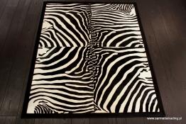Black frame zebra (1)
